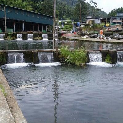 須川フィッシングパークの記事に添付されている画像