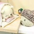 阪神百貨店本店 催事…
