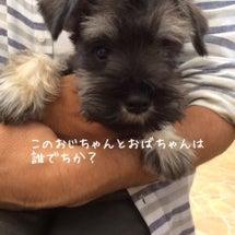 なごみ HAPPY …