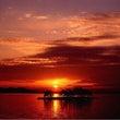 絶景と…最近出る…カ…