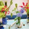 今週のお花は、、?の画像