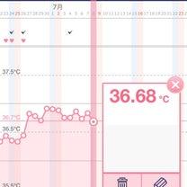 高温期12〜13日目 茶オリ出現……の記事に添付されている画像