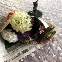紫陽花の花(⌒▽⌒)の記事に添付されている画像