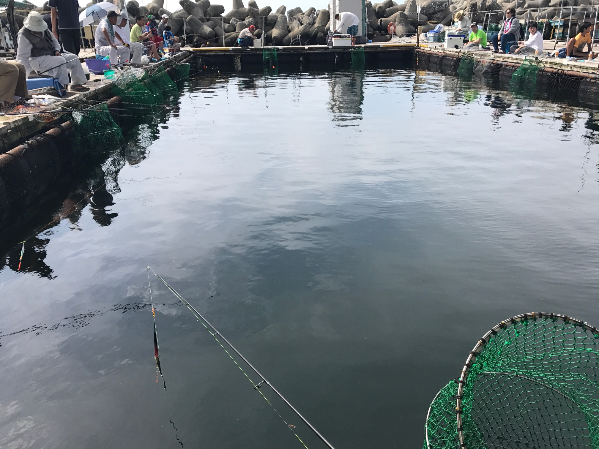 田尻 海上 釣り堀