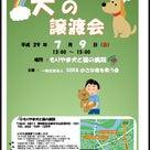 本日名古屋市守山区で13時より譲渡会です。の記事より
