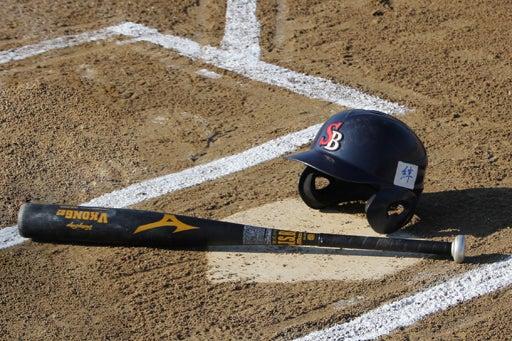 野球が日本人に好かれる訳を探ってみたいと思います。歴史を紐解き ...