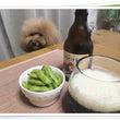 """""""ビール・発泡酒が危…"""