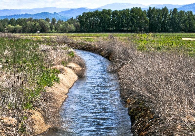 """292. irrigation """"水を中に入れ..."""
