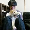 猫舎・子猫ブリーダー紹介(弊社概要)の画像