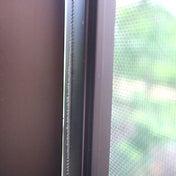網戸しているのに蚊が侵入。原因に気づいた
