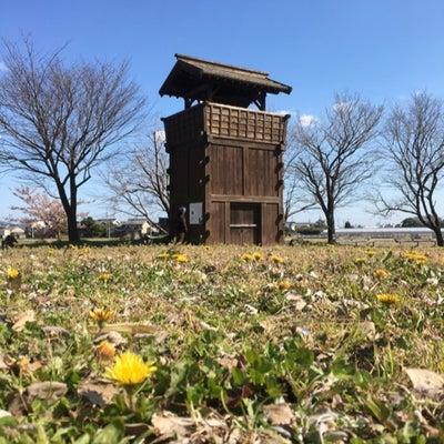城から観る[愛知県の城]の記事に添付されている画像