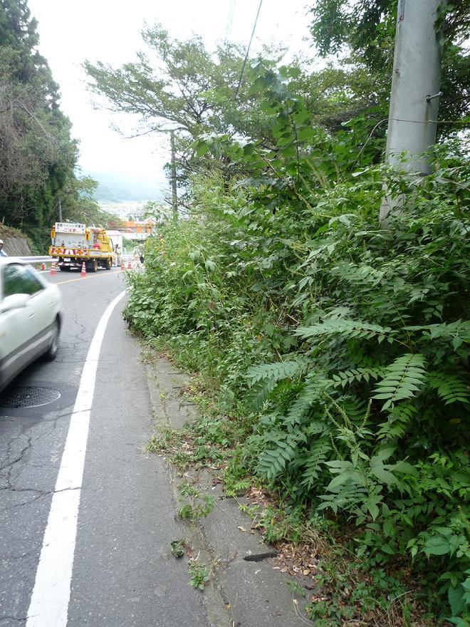 群馬県道266号上発知材木町線後編 | トリブログ