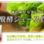 ■人気の醗酵ドリンク…
