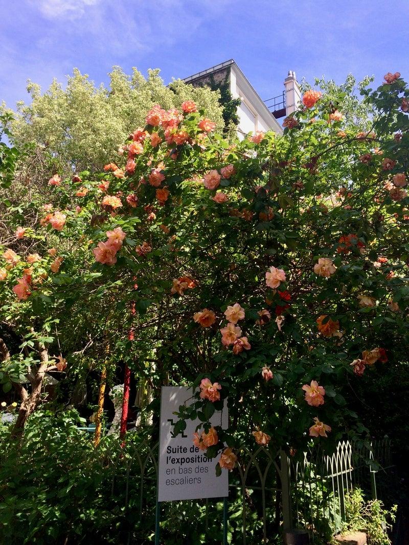 パリの夏のお楽しみ!秘密の花園カフェへ