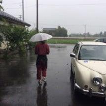 雨が降り続いてます。…