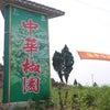 四川花椒収穫ツアー⑤青山椒農園へ収穫体験の画像