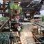夏の多肉狩りパート2&センペルの花(〃∀〃)♬