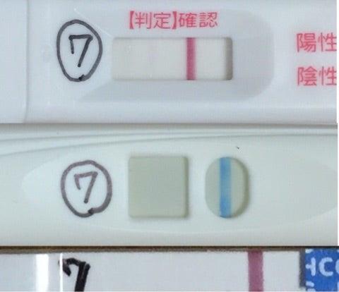 🤭高温期14日目 フライング 陰性