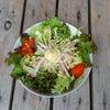 【まこと庵 新メニュー】 サラダうどん/ハイボールの画像