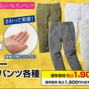 【しまむらチラシ】50%OFF「CLOSSHI」さら・冷パンツ、28日限定プレミアムフライデー