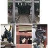 神社の旅①の画像