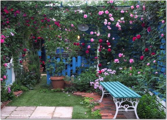 バラの庭 ベンチ