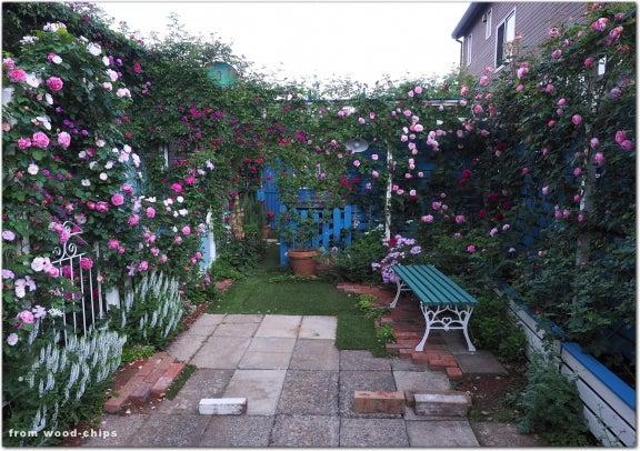 バラの庭 車庫