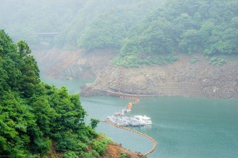 貯水 神奈川 率 ダム 三保ダム広場のページ