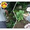 夏休み*札幌市児童デイサービスキラリ*の画像