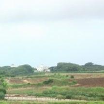 猛暑の8月も三浦半島…