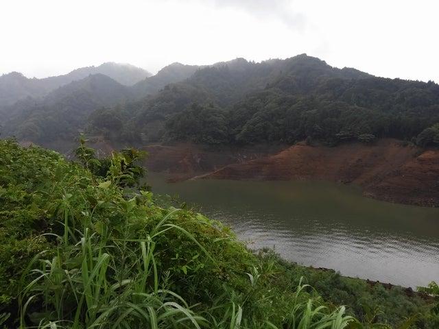 貯水 神奈川 率 ダム 利根川水系