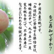 幻の貴重な桃でした!…