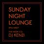 DJ KENZI /…