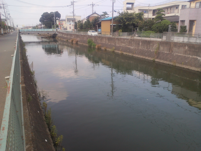 2017/8/6 坂川釣行 | AKIRAの江...
