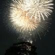 江戸川の花火大会