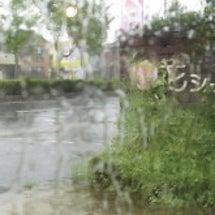 台風5号が接近・・