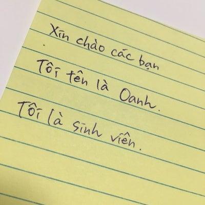 【ベトナム語の文字事情〜筆記体難しすぎる件について〜】の記事に添付されている画像