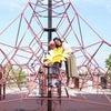 茨木市でジャンボひまわり!の画像