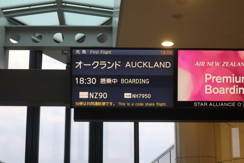 ニュージーランド4