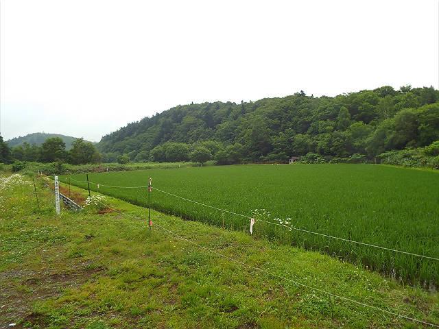 遠別町 日本最北の水田 | 北海道応援のブログ