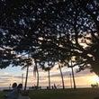 フォトツアー ハワイ