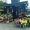 ロンドンのお花屋さんの画像