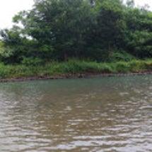 そして8月釣行・・・…