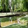 ウンブリアの素敵な泉