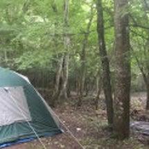 キャンプだ!ワン!