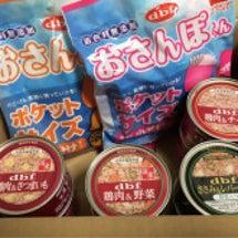 【デビフ 新商品6種…