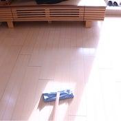 お掃除日和①