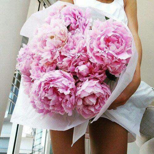 Lady 女性として最後まで美しい花。。。♡の記事より