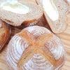 いちじくの天然酵母で作ったカンパーニュの画像