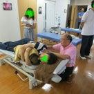 永井先生に教わる骨ひびき療法の記事より